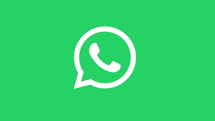 conversas falsas no whatsapp